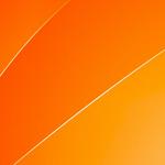 Приказ МВД России от 31 марта 2015 г. N 385 «Об утверждении Порядка организации подготовки кадров для замещения должностей в органах внутренних дел Российской Федерации»