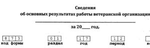 Код формы 873