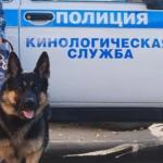 Приказ МВД РФ № 979 от 27.12.2019