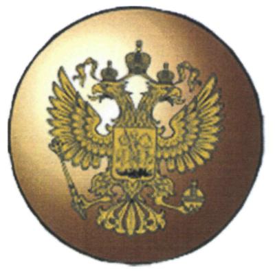 Пуговица МВД РФ