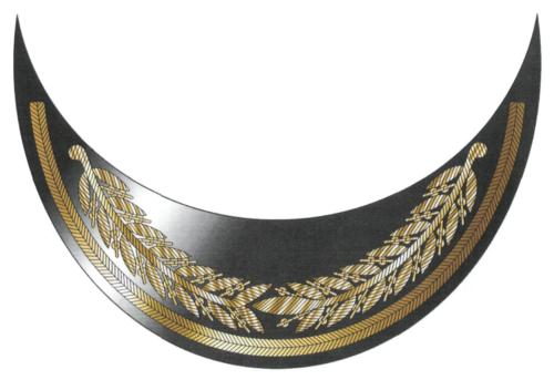 Рисунок шитья золотистого цвета на козырьке фуражки