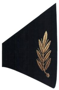 Рисунок шитья золотистого цвета на воротниках курток